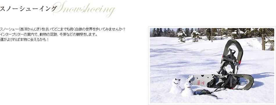 スノーシューイング
